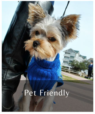 Carolina_Beach_NC_Pet Friendly